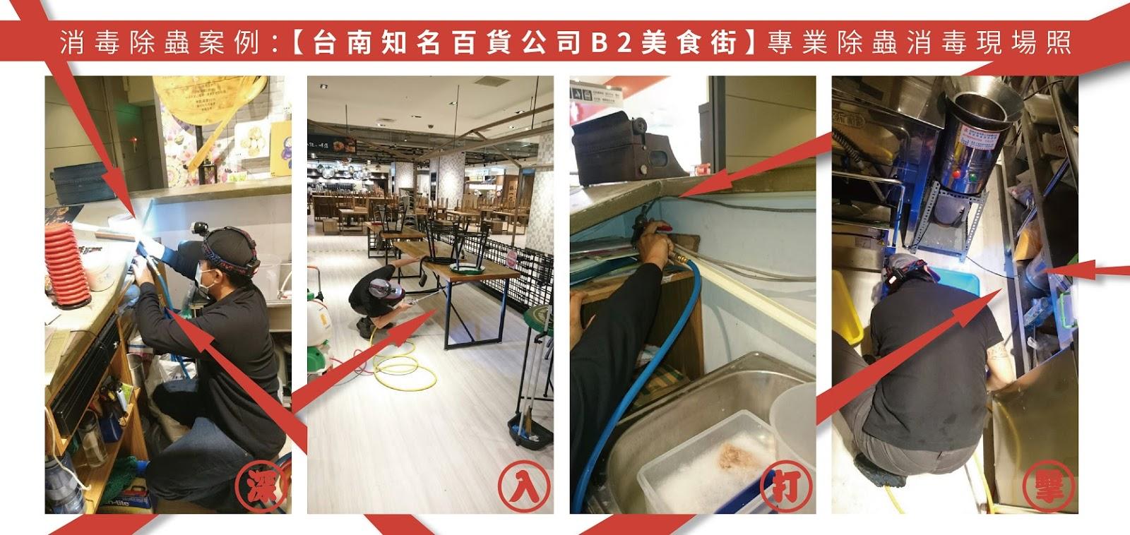 台南除蟲公司現場案例