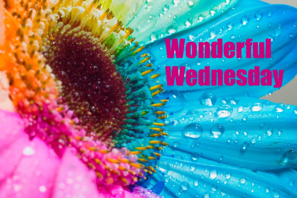 wonderful wednesday quotes quotesgram