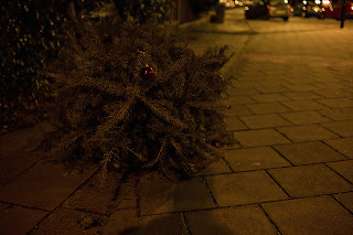 sad dead christmas tree alone in night