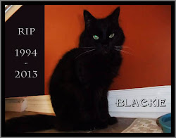 <i>BLACKIE</i> 1994 - 2013