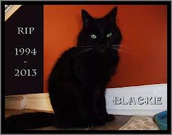 <i>BLACKIE</i> 1994 - 2013