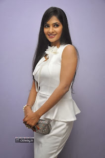 Madhumitha-Stills-at-Biryani-Movie-Audio-Launch