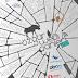 Özgür Web Teknolojileri Günleri 2012