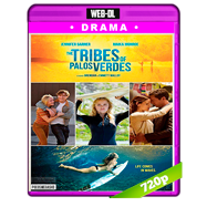 The Tribes of Palos Verdes (2017) WEB-DL 720p Audio Dual Latino-Ingles