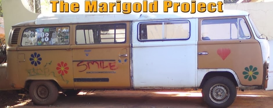 The Marigold Project