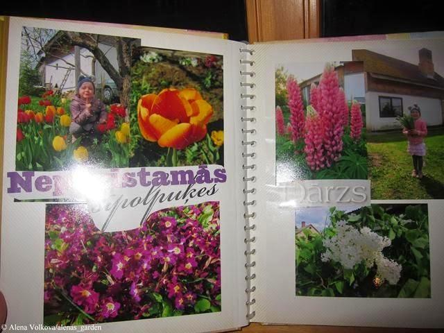 фотоальбом, альбом, подарок на 8 марта, цветы, фото цветов, для садовода, огородника