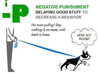 dog training and negative punishment