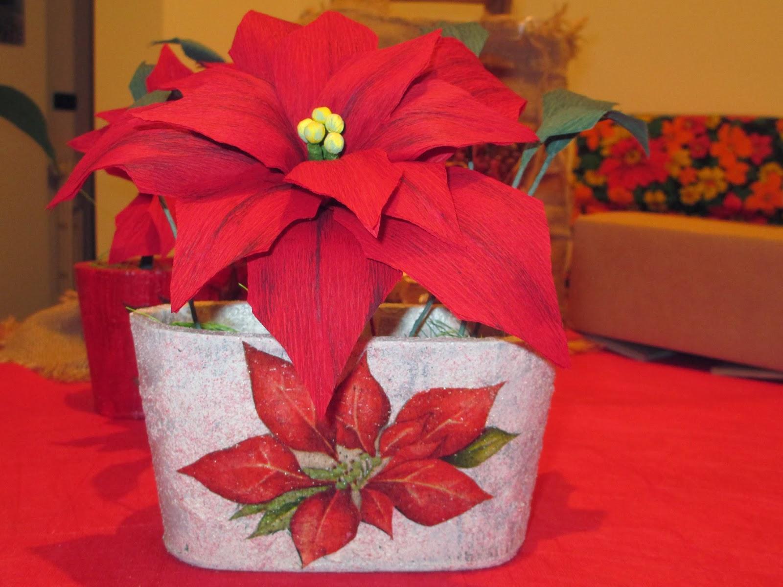 Stella Di Natale In Stoffa.Daisy Garden Tradizioni E Storie Di Natale La Stella Di Natale