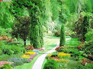 Botanik bahçesi manzara