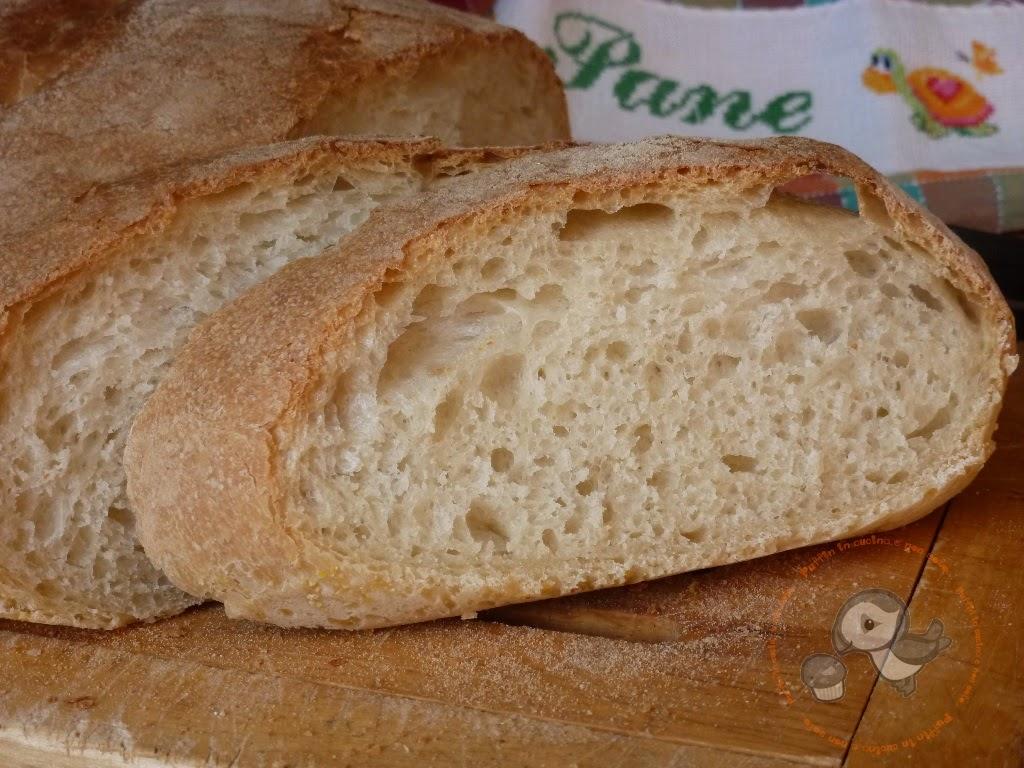 pane bianco con pasta madre...un pane semplice per tutti i giorni.