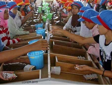 Info kerja samperna, Lowongan sampoerna terbaru, Peluang karir sampoerna 2015