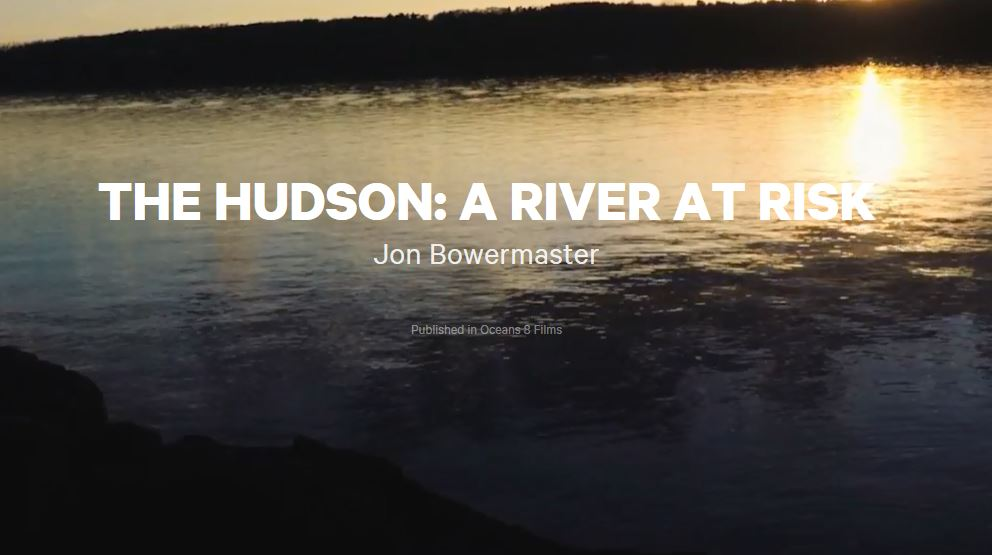 The Hudson: A River At Risk