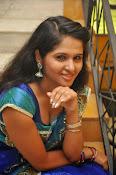 Jayanthi Rajput photos in saree-thumbnail-8