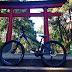 Mountain Biking in the Heart of Tokyo