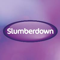 Slumberdown Traditional Memory Foam Pillow Review : Its a London Bird Thing!: Slumberdown Travel memory foam neck pillow Review