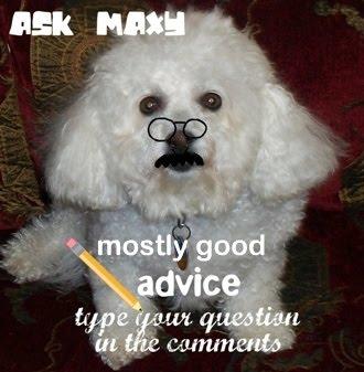 ASK MAXY