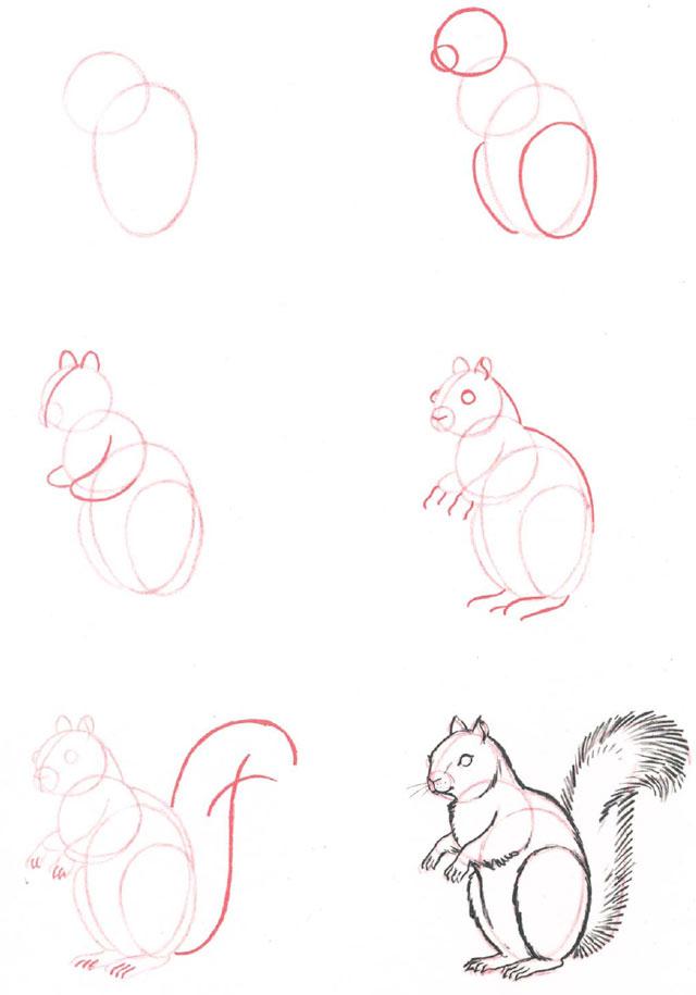 Corso di grafica e disegno per imparare a disegnare - Come disegnare un cartone animato di gufo ...