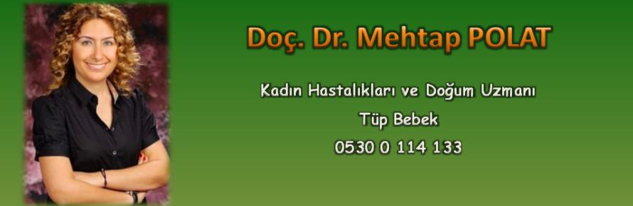 Doç. Dr. Mehtap POLAT