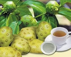 Noni Fruit Benefits And Useful For Health