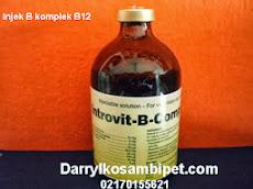 INTROVIT-B-COMPLEX
