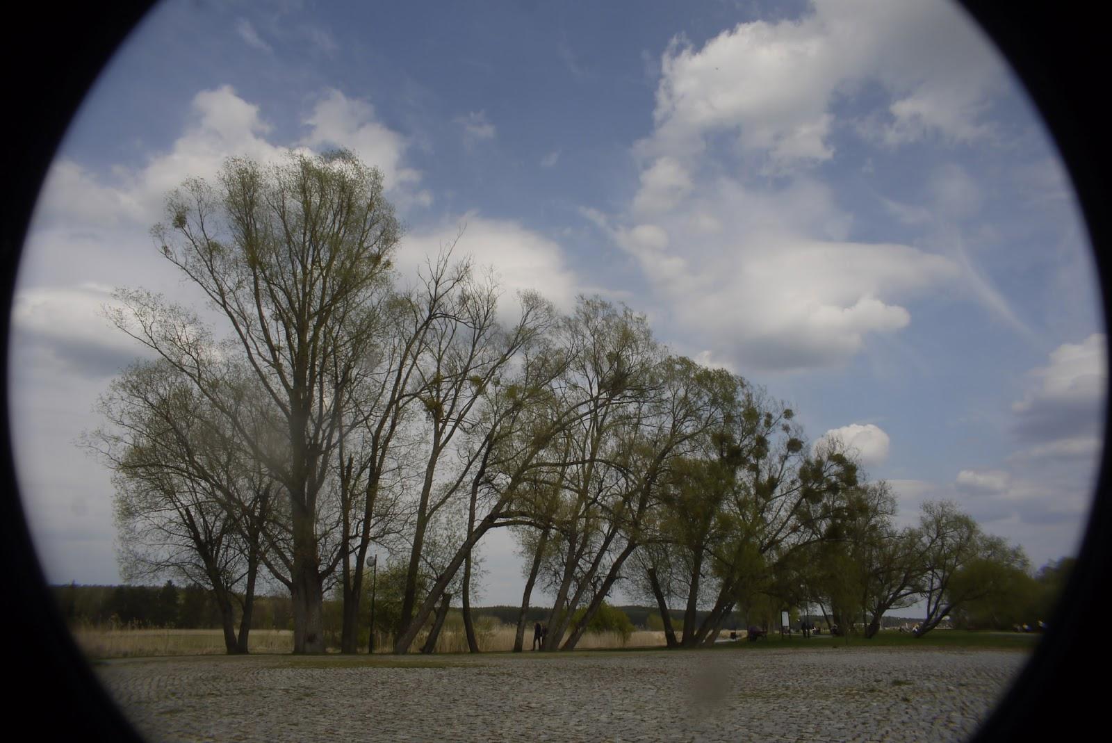 Cosmicar 12.5/1.9 @22 - landscape (2:3 crop).