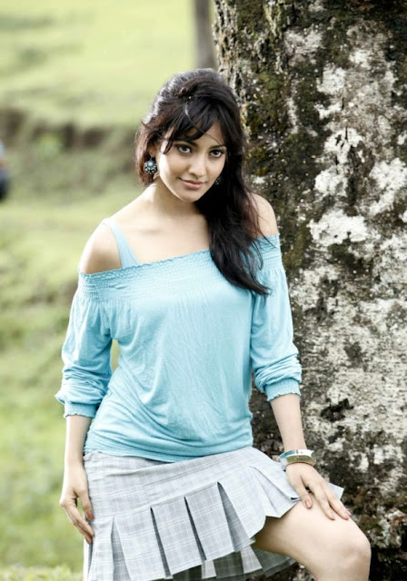 Neha Sharma Latest Hot Photos