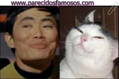 George Takei con gato