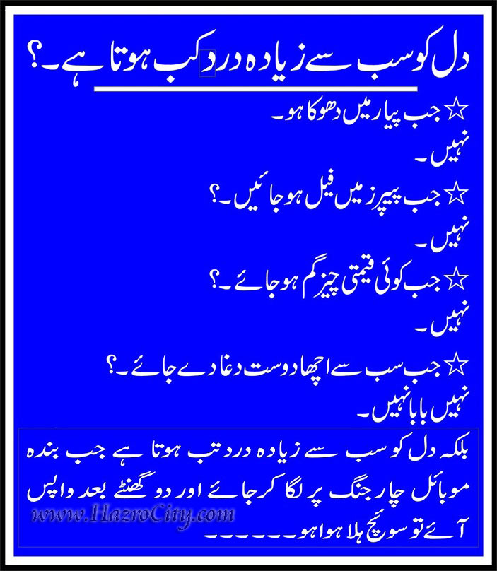 Chhachhi People Share Pictures Daily: Urdu Funny flie...