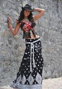 Illeana D'Cruz latest glamorous Photos-thumbnail-3