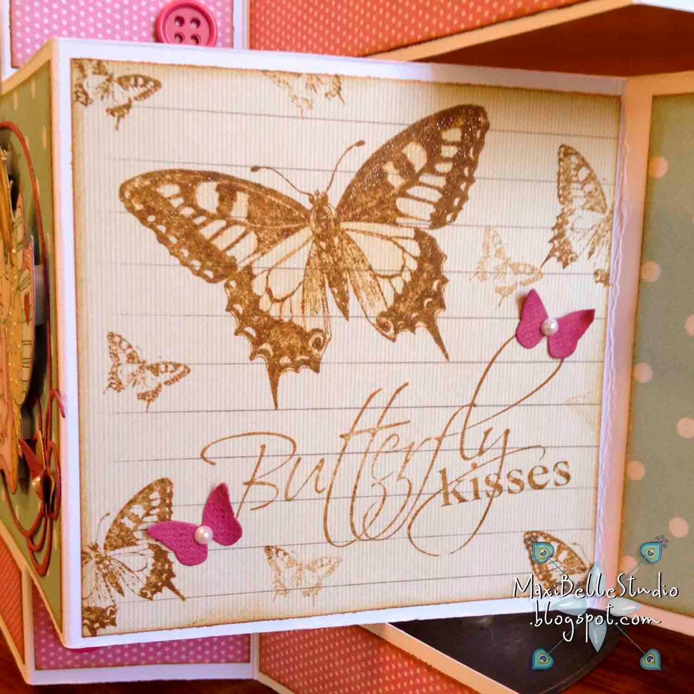 Kaszazz Butterfly Butterflies