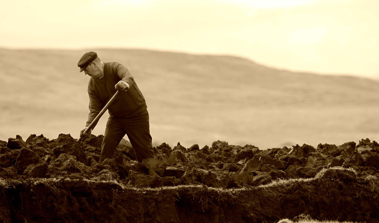 Digging by seamus heaney essay