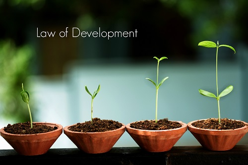 Web Development Companies,Website Development Company