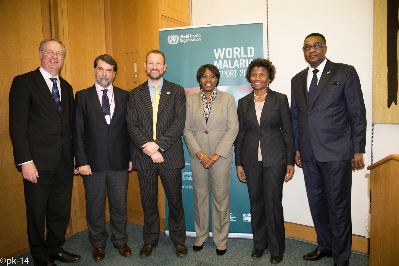 Image result for Malaria report launch