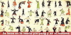 Se basa en la teoría yin-yang y el taoismo