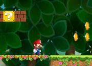 Mario GC