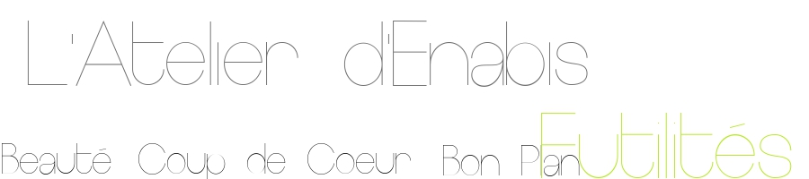 L'atelier d'Enabis