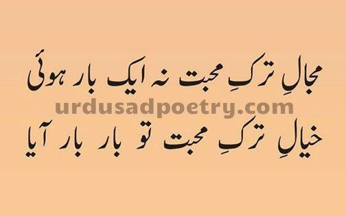 Majal-e-Tark-e-Muhabbat