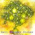 Introduction of Gallbladder Stones (Cholelithiasis)