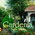 Gardenia - აქ ჩაის კი არა სულსაც დალევდა კაცი