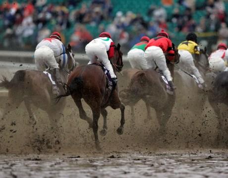 Yarış Atı Oyunu