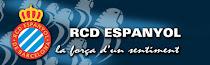 ATLÉTICO vs RCDE // Domingo 24 Febrero 2013 // 19:00 // VICENTE CALDERÓN