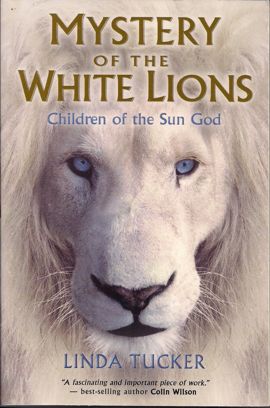 lion in the white house book Big hearted books shares its profits with schools american lion: andrew jackson in the white house in lion in the white house.