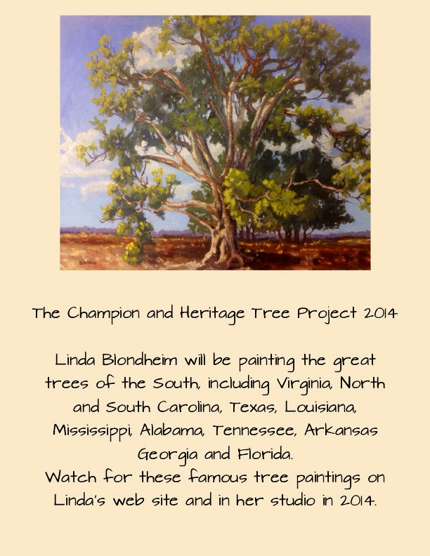 Champion and Heritage Trees Project 2014