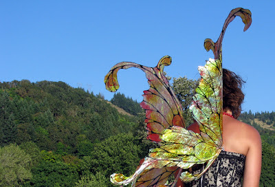Danielle Hurley large costume fairy wings