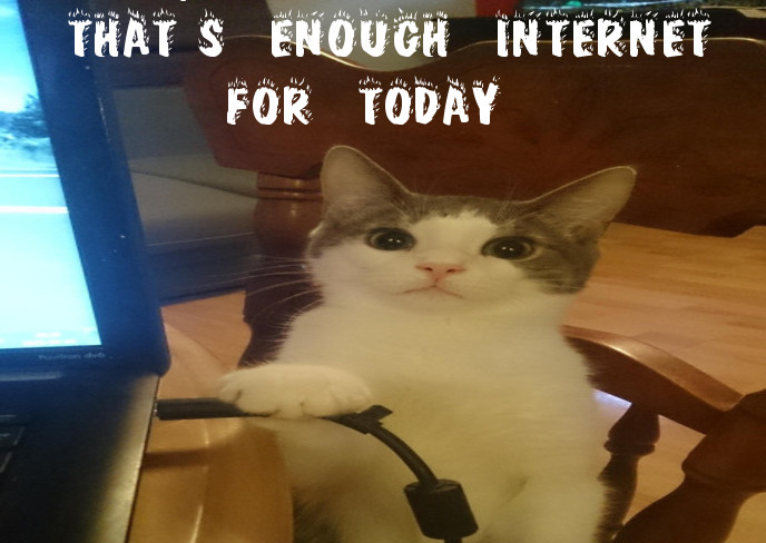 cat-enough-internet-for-today.jpg