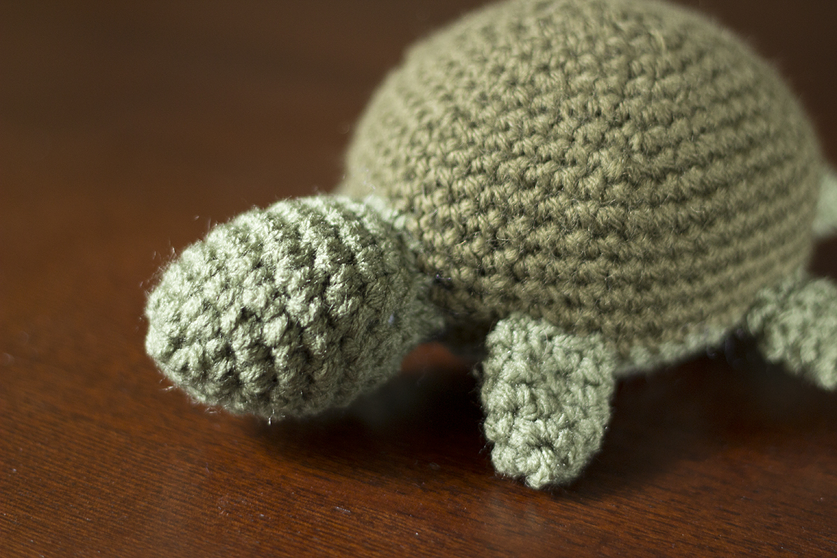 :: steph chows ::: Is that turtle wearing baby booties?
