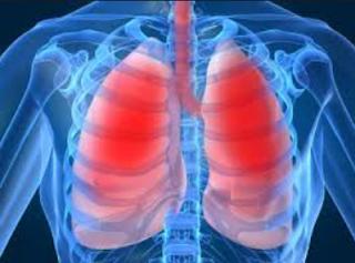 http://obeyherbal.blogspot.com/2015/08/cara-sederhana-menjaga-kesehatan-paru.html