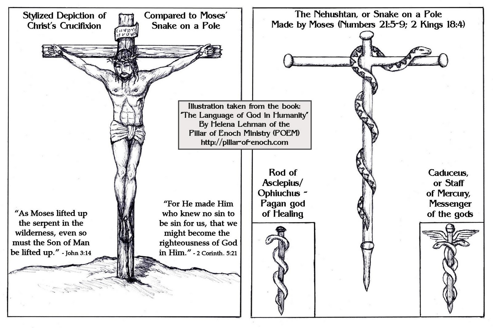 Pillar of enoch ministry blog the true vine and the trumpet call of god click on image to enlarge biocorpaavc Images