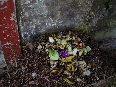 Compostagem é geração de renda e menos lixo nos aterros