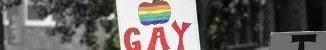 Homosexualii se prezintă pe ei înșiși: Fiii voștri vor deveni slujitorii noștri...